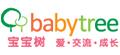 宝宝树垂直行业网络营销
